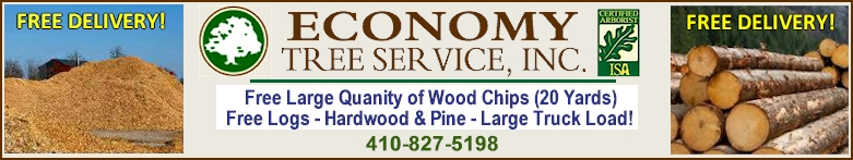 Free Lumber and wood chips! - Call 410-827-5198